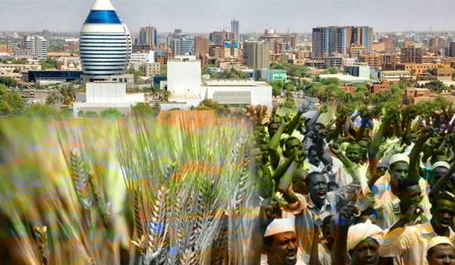 احتجاجات على غلاء الخبز في السودان سلة غذاء العالم
