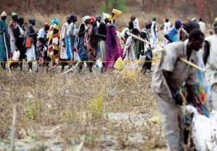الانهيار الاقتصادي في السودان الجذور والحلول (2)